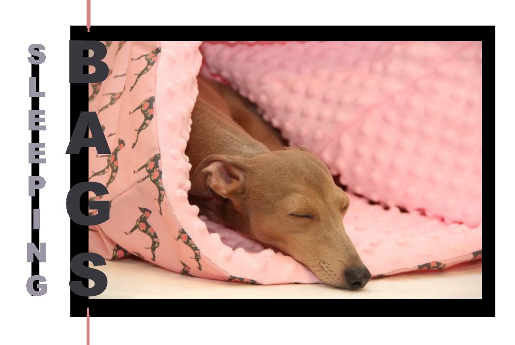 sleepingbags-po